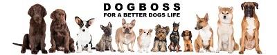 Das Interview über den DOGBOSS Onlineshop