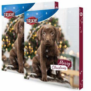 Worauf muss ich beim Kauf eines Hunde-Adventskalender Testsiegers achten?