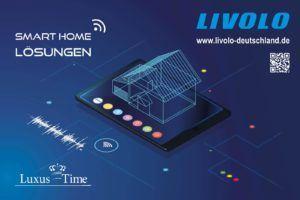 Das Interview mit Roman Romaker vom Livolo Shop