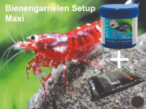 Große Auswahl an Garnelenfutter im Shrimp Olineshop