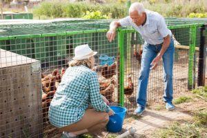 Welche Materialien benötige ich für den Bau eines langlebigen Hühnerstalls?