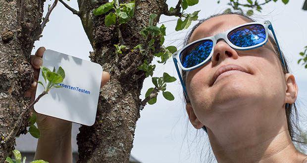Klickparts Sonnenbrille im Test - kein Wunder, dass sich auch heute noch viele von dem starken Design angesprochen fühlen