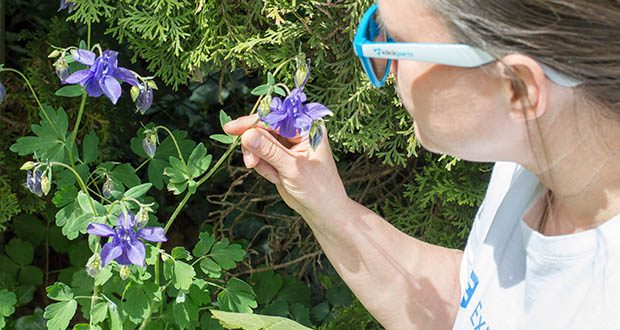 Klickparts Sonnenbrille im Test - gute Passform