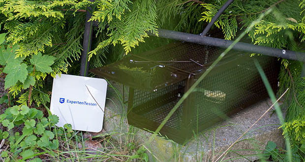 Ratzfatz Quickcatch MTBSL20 Mausefalle im Test - geeignet für Outdoor & Indoor Nutzung