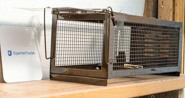 Ratzfatz Quickcatch MTBSL20 Mausefalle im Test - bieten die optimale Lösung für Kleintiere wie z.B. Mäuse und Ratten