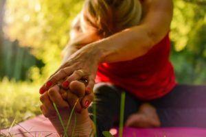 Auswahl bei dem Yin Yoga Onlinekurs im Test und Vergleich