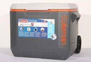 Wie funktioniert ein Kühlbox im Test und Vergleich