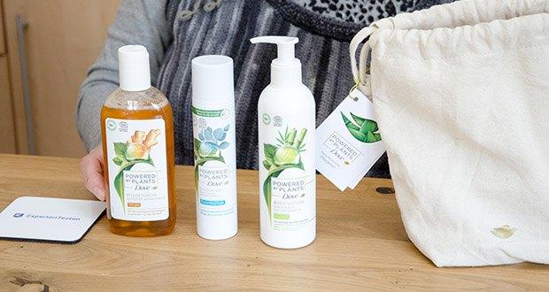 Dove Powered by Plants Duftmix 3-teiliges Geschenkset im Test - ist eines der besten Geschenkideen z.B. zu Valentinstag, Weihnachten, zum Geburtstag oder zum Muttertag