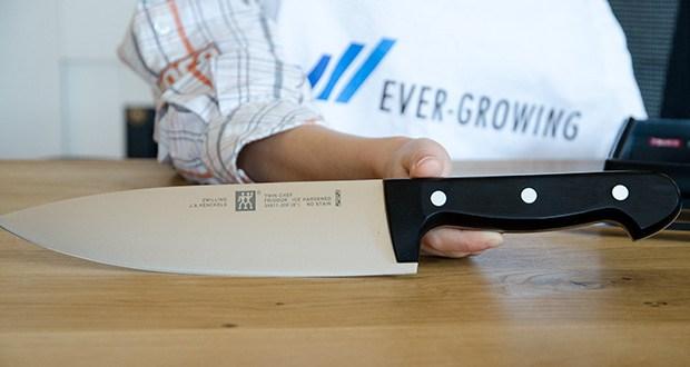 ZWILLING Twin Chef Messer-Set, 3-teilig im Test - multifunktionales Kochmesser (20 cm)
