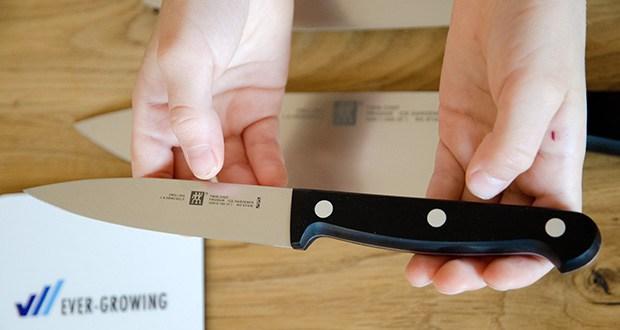 ZWILLING Twin Chef Messer-Set, 3-teilig im Test - Spick-/Garniermesser (Klingenlänge: 10 cm) zum Verarbeiten von Obst und Gemüse
