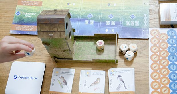 Feuerland Spiele Flügelschlag Brettspiel im Test - wechselnde Rundenziele, Bonuskarten und nicht zuletzt die illustrierten 170 Vogelkarten machen das Spiel dauerhaft abwechselungsreich