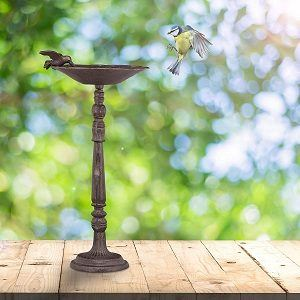 Kaufkriterien für Vogeltränke aus Stein