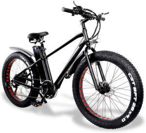 Welche Arten von E-Bike gibt es in einem Preisvergleich?