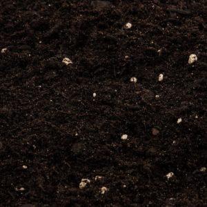 Vorteile aus einem Mutterboden Preisvergleich bei ExpertenTesten