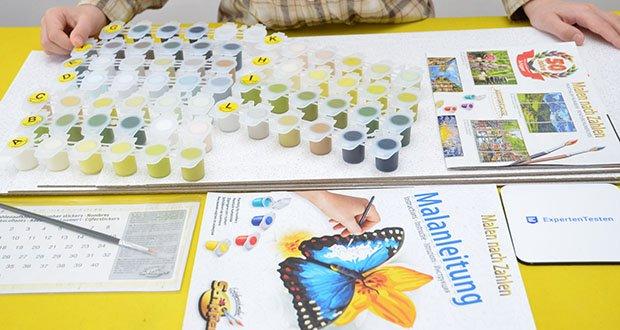 Schipper Malen nach Zahlen, Am Wildbach im Test - der Lieferumfang beinhaltet Acrylfarben auf Wasserbasis, einen Malpinsel, eine Anleitung, eine Vorlage und 3 Leinwände