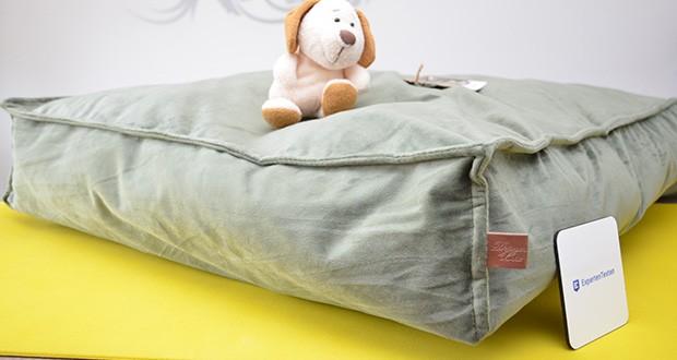 Beeztees K&Bz Hundebett Nalino im Test - die besten Gesundheits-Accessoires für Ihren Hund