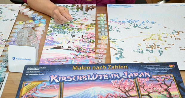 Schipper Malen nach Zahlen, Kirschblüte in Japan im Test - so bleiben die selbstgemalten Bilder nicht nur den Künstlern vorbehalten