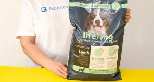 Die besten Alternativen zu einem Hundefutter im Test und Vergleich