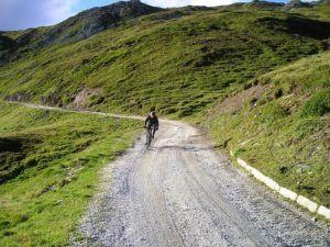 Die Geschichte des Gravel Bikes im Test und Vergleich