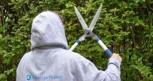 Nach diesen Testkriterien werden Heckenscheren bei ExpertenTesten verglichen