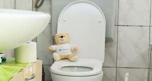 Verschiedene Vorteile des Toilettendeckels im Test und Vergleich