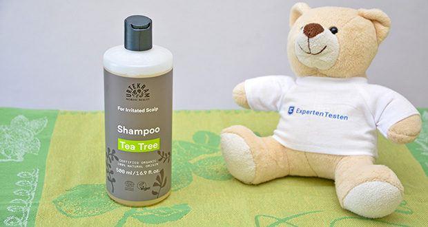 Urtekram Teebaum Shampoo Bio im Test - Ihre Kopfhaut erhält gleichzeitig Feuchtigkeit und Pflege von den Befeuchtern der Natur, Aloe Vera und Glyzerin