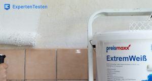 Die besten Alternativen zu einer Wandfarbe im Test und Vergleich