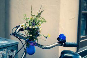 Alles wissenswerte aus den Fahrradgriffen Test