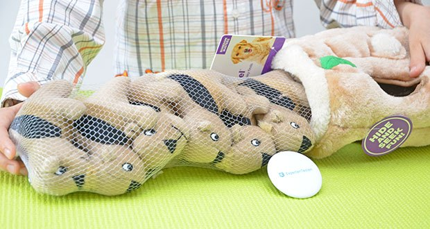 Outward Hound Plüsch-Hundespielzeug im Test - enthält Eichhörnchen mit versteckten Quietschern, die Ihr Hund unwiderstehlich finden wird