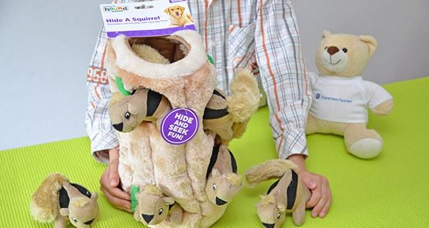 Outward Hound Plüsch-Hundespielzeug im Test - stecken Sie die Plüscheichhörnchen in den Baumstamm und lassen Sie Ihren Hund dann daran schnuppern, nach den Eichhörnchen stöbern und sie herausholen
