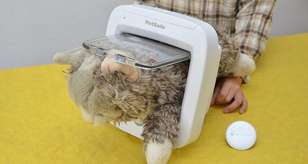 PetSafe Katzenklappe mit Chiperkennung im Test - ist eine batteriebetriebene Haustierklappe die für Katzen und Haustiere bis zu 7 kg