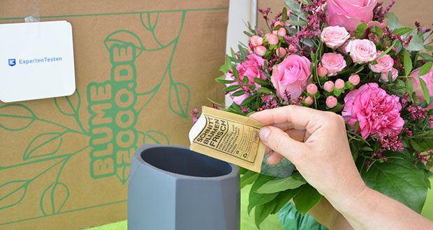 Blume2000 Blumenstrauß Schön, dass es Dich gibt im Test - frische Vase verwenden; Blumenfrisch ins Wasser geben