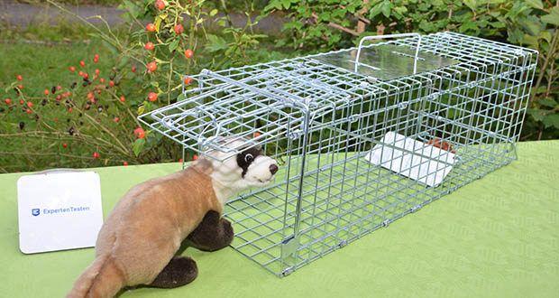 Elbe Lebendfalle MAF04 61x18x21cm im Test - geeignet für kleinen Tier wie Marder, Mäusen, Ratten, Eichhörnchen, Kaninchen, Nerzen, kleinen Katzen, usw.